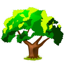 Oak class logo